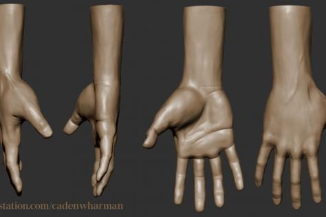 3D sculpted hand from multiple points of view by Caden Harman