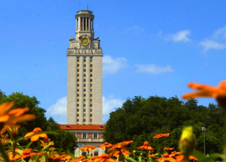 UT Tower with orange flowers on a sunny day